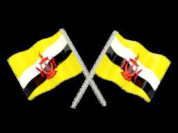 Free Calls to Brunei