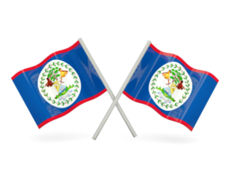Free Calls to Belize