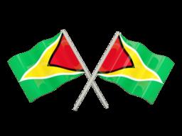 Free Calls to Guyana