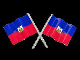 Free Calls to Haiti