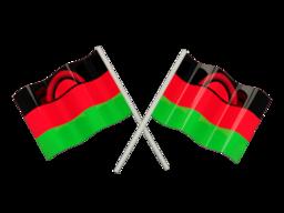 Free Calls to Malawi
