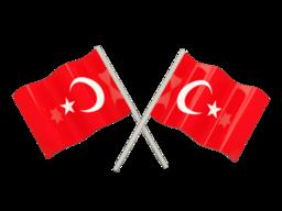 Free Calls to Turkey