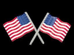Free Calls to USA